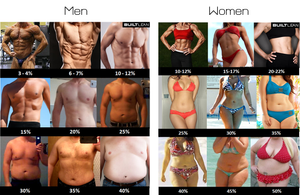 Octavia Activewear body fat percentages