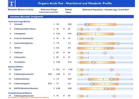 Organic Acid Testing.png
