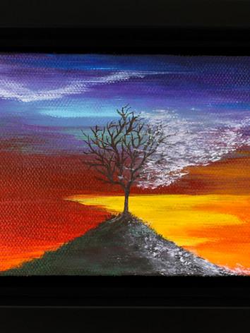 LGBTQ baby Tree painting (LGBTQ Flag)