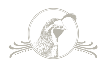 birdbrownArtboard 17_2x.png