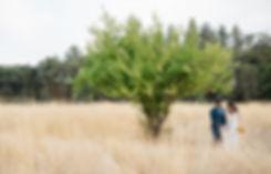 yokayo-ranch-wedding-ukiah-california-01