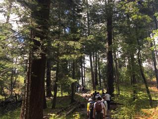 9月9日Mt Lemmon野餐Hiking照片
