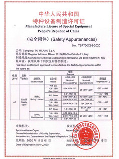 CHINESE LICENSE