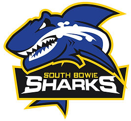 SHARKS BOWIE.jpg