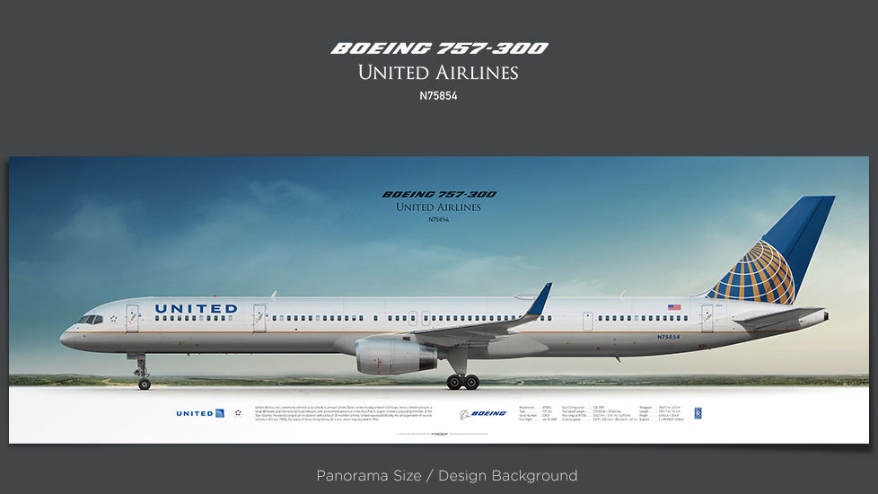 Boeing 757-300 United Airlines, plane prints, retired pilot gift, aviation posters, airliners prints, civil aircraft, UAL