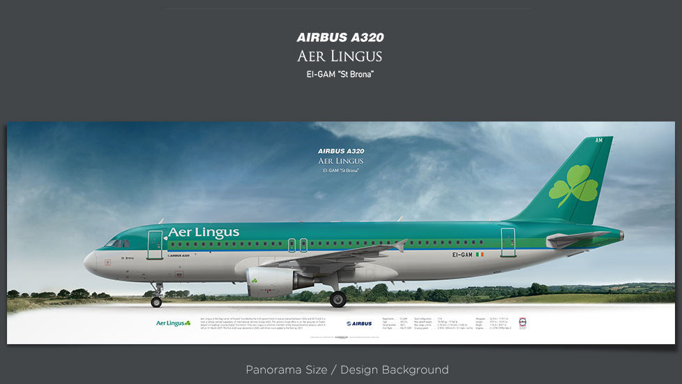 Airbus A320 Aer Lingus, plane prints, retired pilot gift, aviation posters, airliners prints, civil aircraft, EIN, jetliner