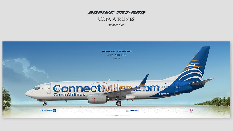 Boeing 737-800 Copa Airlines, gift for pilots, aviation prints, pilot wall decor, avia poster, aircraft profile print