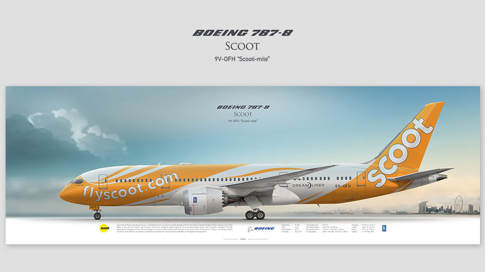 Boeing 787-8 Scoot, posterjetavia, airliners profile prints, aviation collectibles prints