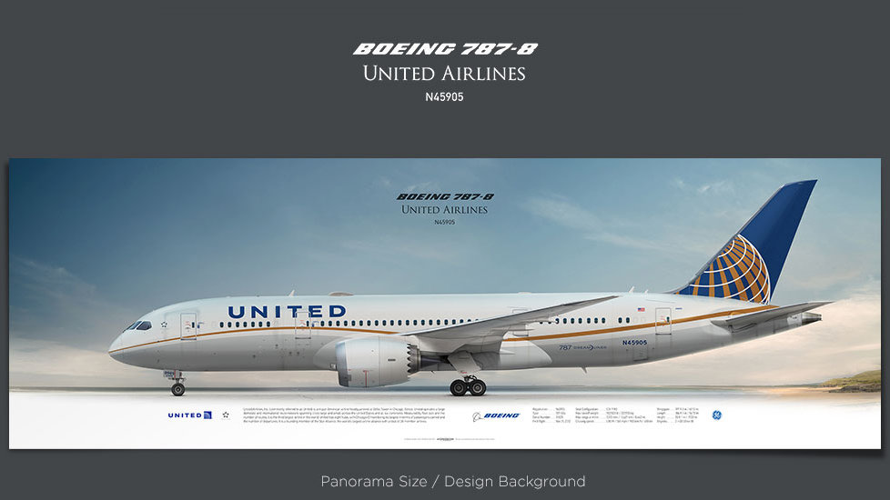 Boeing 787-8 United Airlines, plane prints, retired pilot gift, aviation posters, airliners prints, civil aircraft, UAL