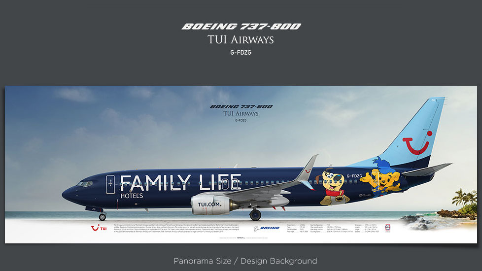 Boeing 737-800 TUI Airways, plane prints, retired pilot gift, aviation posters, airliners profile prints, TOM, jetliner