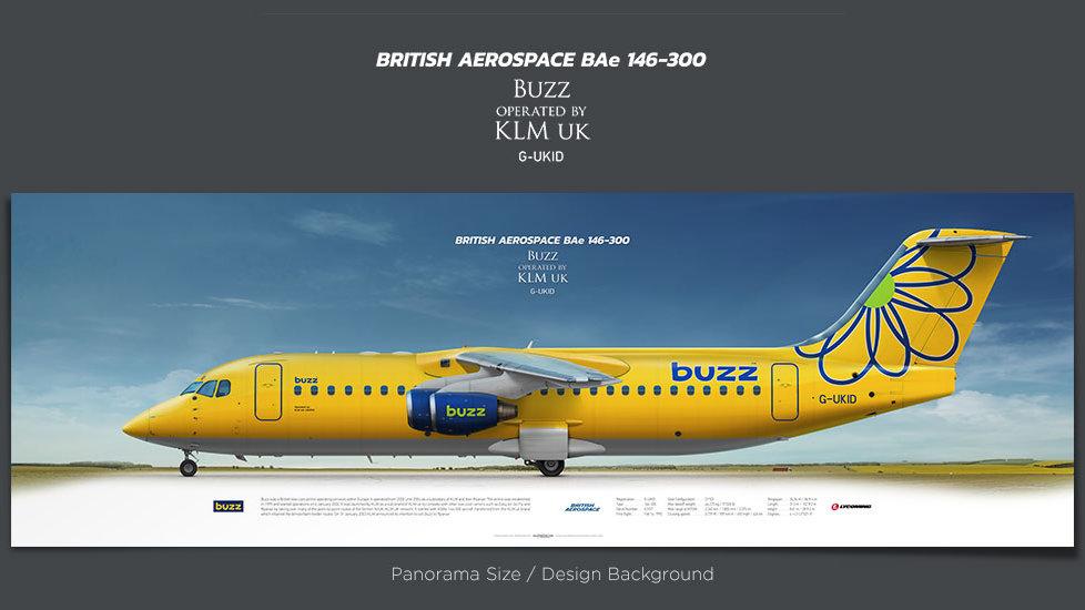 British Aerospace BAe 146-300 Buzz, plane prints, airplane poster, retired pilot gift, airline prints, jetliner prints