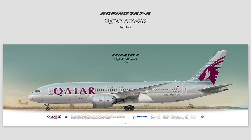Boeing 787 Qatar Airways, gift for pilots, aviation prints, pilot wall art, avia poster, aircraft profile prints, dreamliner