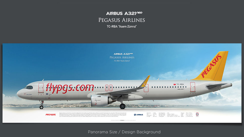 Airbus A321neo Pegasus Airlines, plane prints, retired pilot gift, aviation posters, airliners prints, civil aircraft, PGT