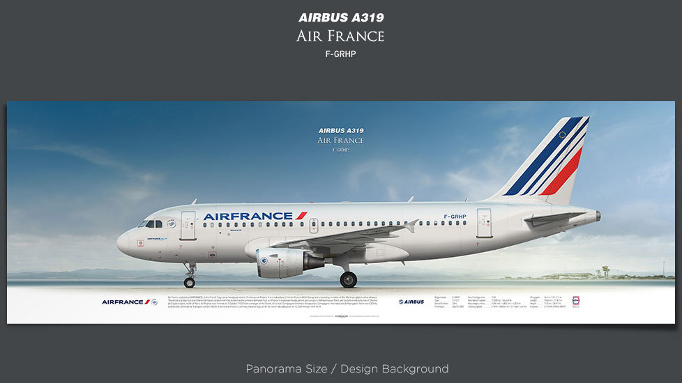 Airbus A319 Air France, gift for pilots, aviation prints, avia poster, aircraft profile art prints, aircraft illustration