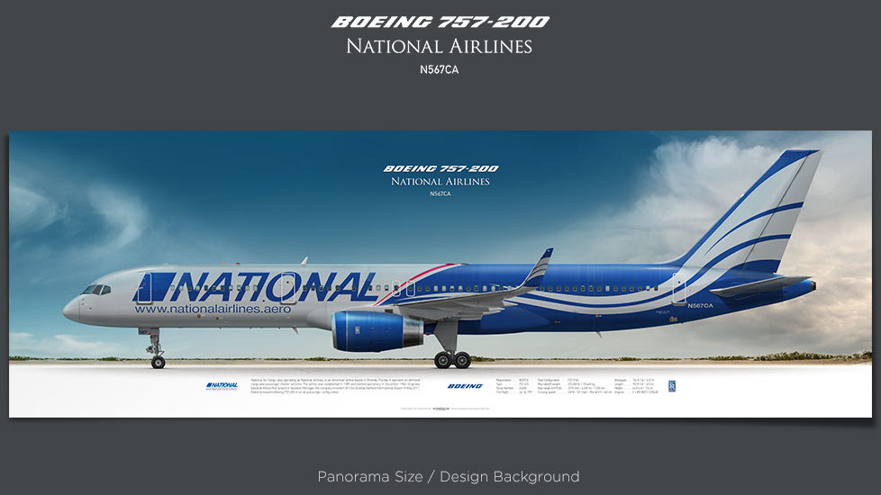 Boeing 757-200 National Airlines, plane prints, retired pilot gift, aviation posters, airliners prints, jetliner