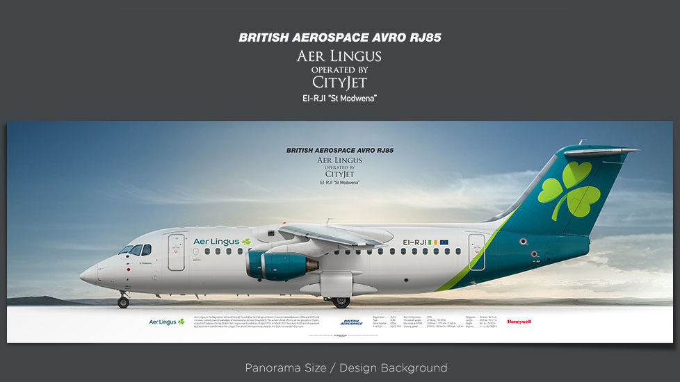 British Aerospace Avro RJ85 Aer Lingus operated by CityJet, plane prints, retired pilot gift, aviation posters, regional jet