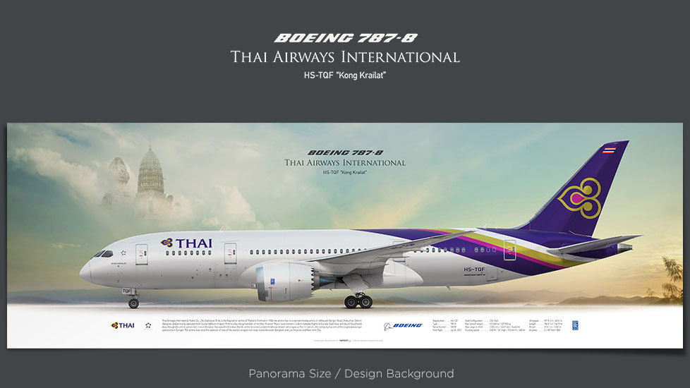 Boeing 787-8 Thai Airways, plane prints, retired pilot gift, aviation posters, airliners prints, dreamliner, civil aircraft