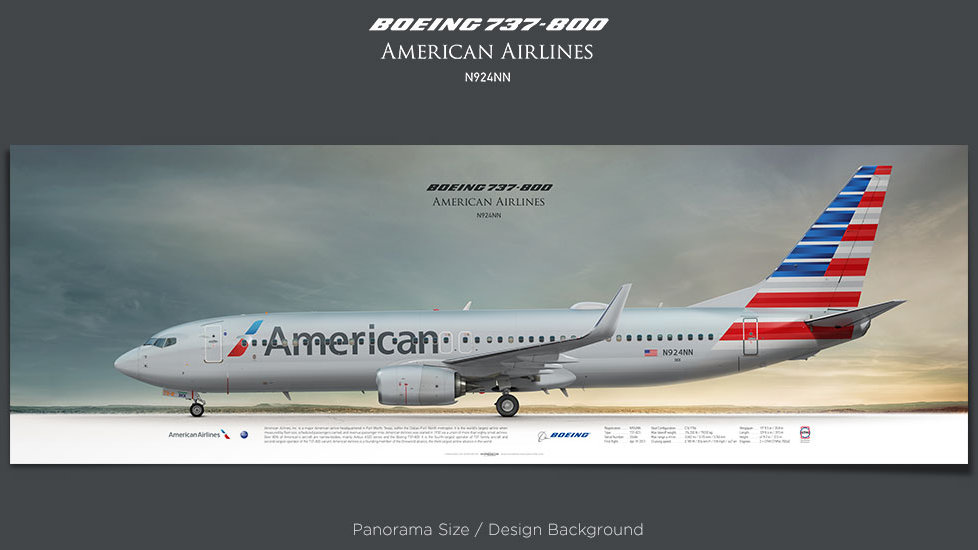 Boeing 737-800 American Airlines, plane prints, retired pilot gift, aviation posters, airliners prints, airliner profiles