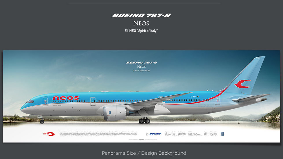 Boeing 787-9 Neos, plane prints, retired pilot gift, aviation poster, airliners prints, Dreamliner, civil aircraft print, NOS