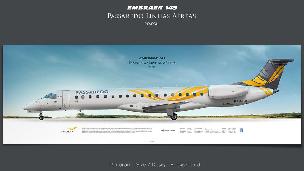 Embraer 145 Passaredo Linhas Aéreas, plane prints, retired pilot gift, aviation posters, airliners prints