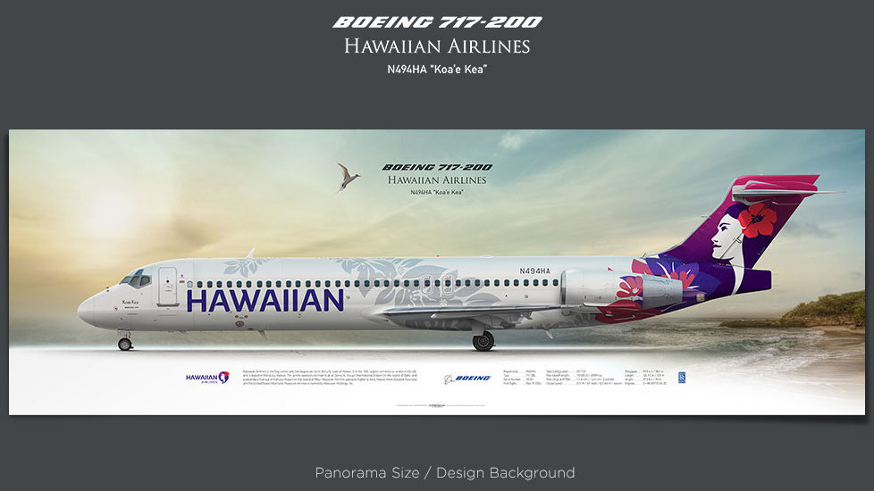 Boeing 717-200 Hawaiian Airlines, plane prints, retired pilot gift, aviation posters, airliners prints, regional aircraft