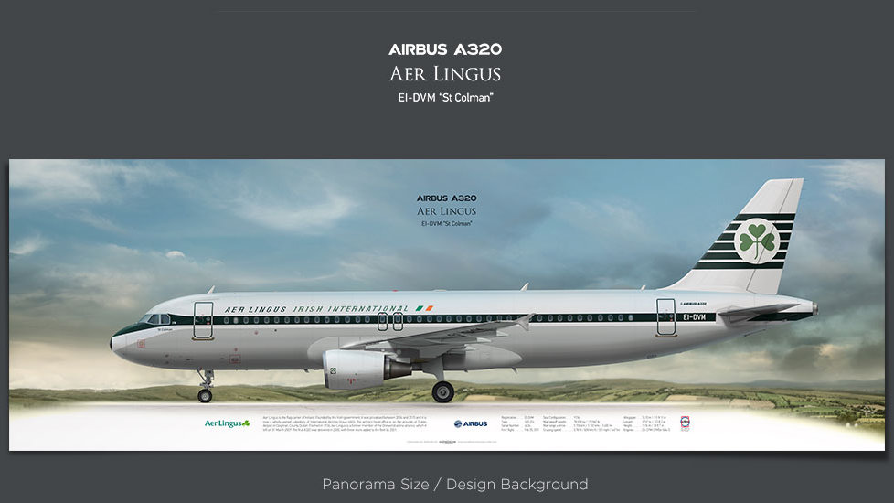 Airbus A320Aer Lingus, plane prints, retired pilot gift, aviation posters, regional jet, irish retrojet, airliner print, EIN
