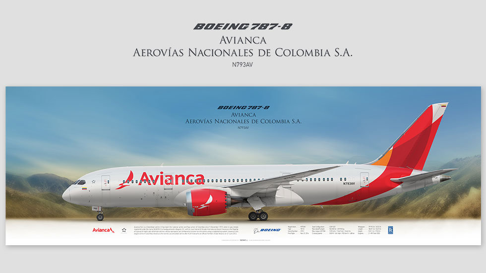 Boeing 787-8 Avianca, posterjetavia, profile prints, gift for pilots, aviation, airplane picture, airline