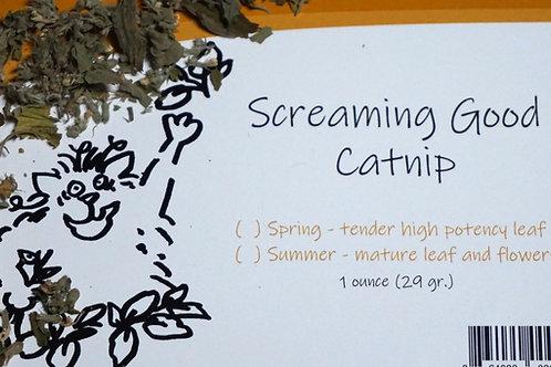 Screaming Good Catnip