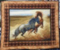 wild- horses.JPG