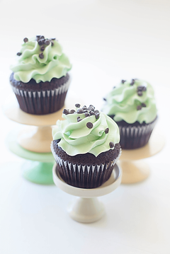 mint chocolate chip 2.png