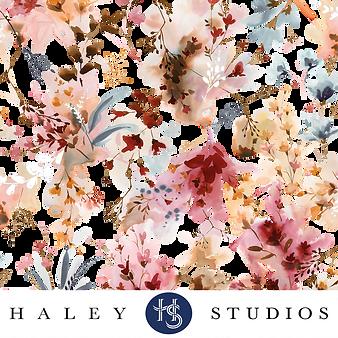 HALEY STUDIOS.png