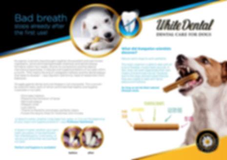 dental-care-bruno-02.jpg
