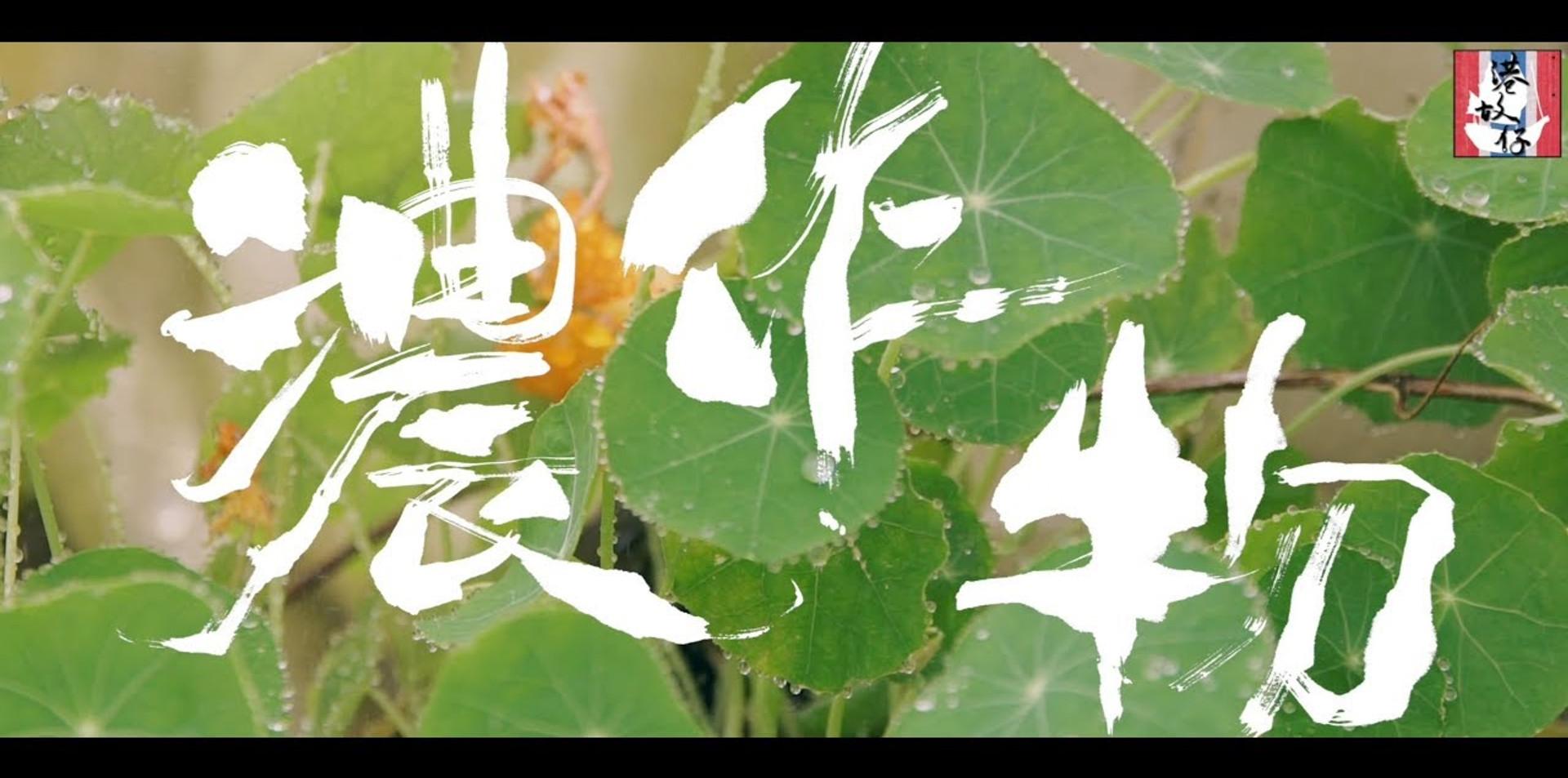 2.52 香港的還有自己種田耕田的農夫?