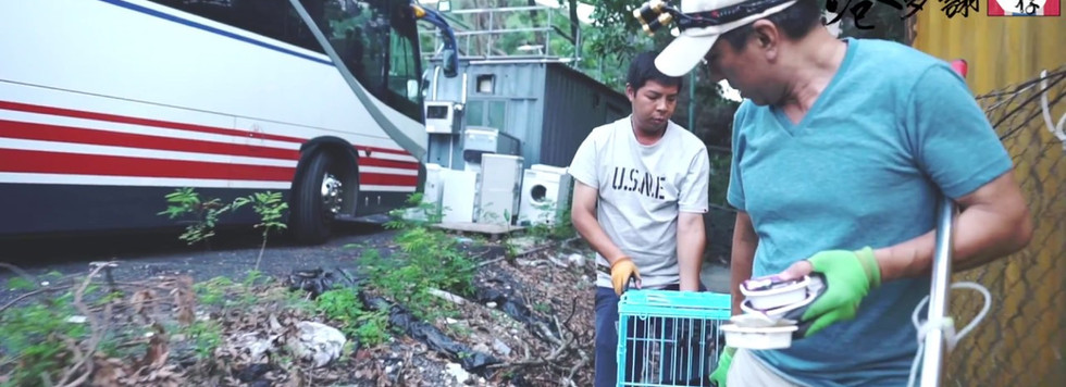 港多謝 #13 拯救狗隻已經成為毛孩守護者KENT生活的一部分