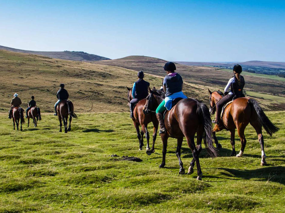 Ride straight onto Dartmoor from Cholwell Riding Stables
