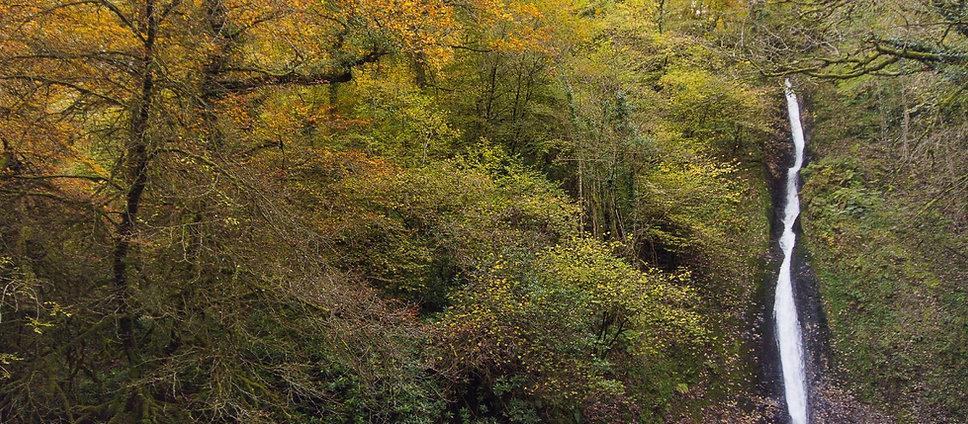1431760495798-autumn-waterfall-website (