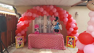 minnie decoration party