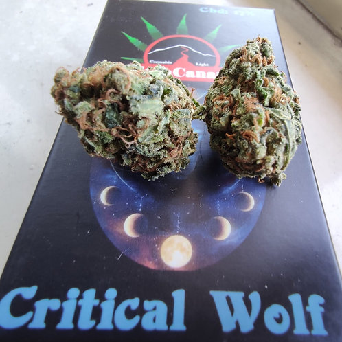 Critical Wolf - 17% CBD