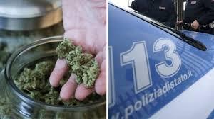 21 chili di marijuana arrivata per posta, è cannabis light. Scarcerato il 25enne di Campomarino