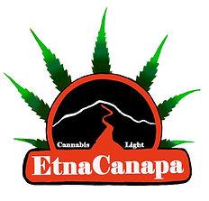 Logo_definit_edited.jpg
