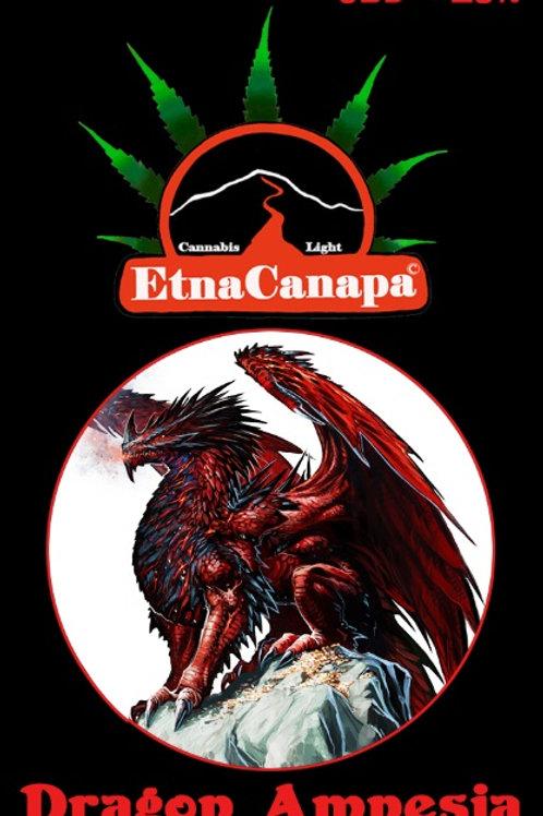 Dragon Amnesia < 18% CBD