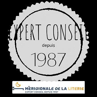 EXPERT CONSEIL DEPUIS 1987.png