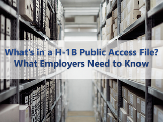 What's in a H-1B Public Access File? What Employers Need to Know