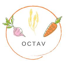 Logo Octav 2.png