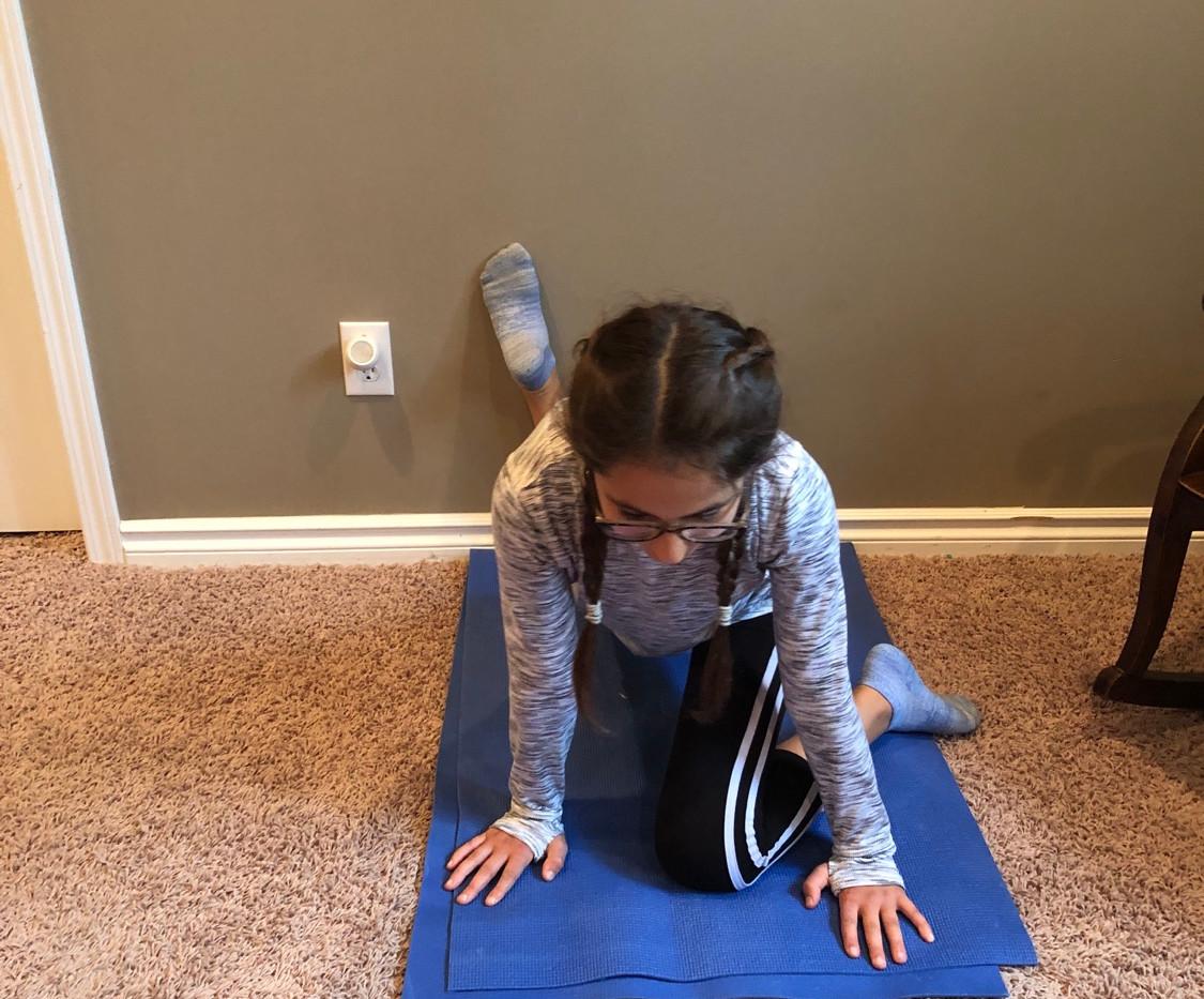 Alixa Flexibility Program