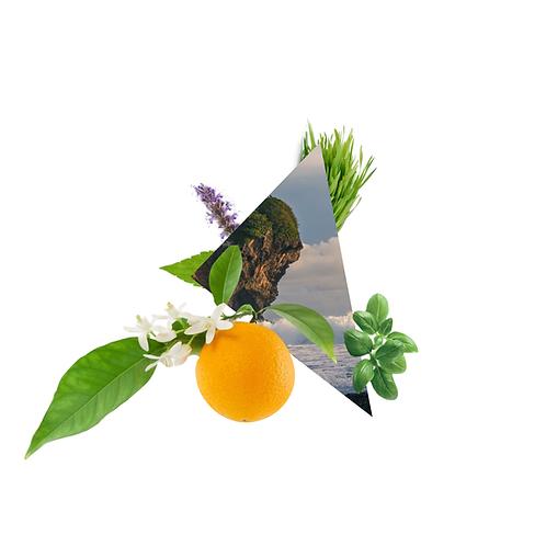 Viatorem - Citrus and Basil Scented Candle