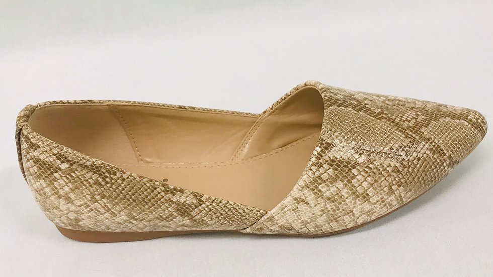 Taxi shoe