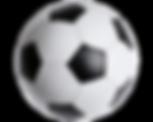 Soccer Endurance & Strengthening