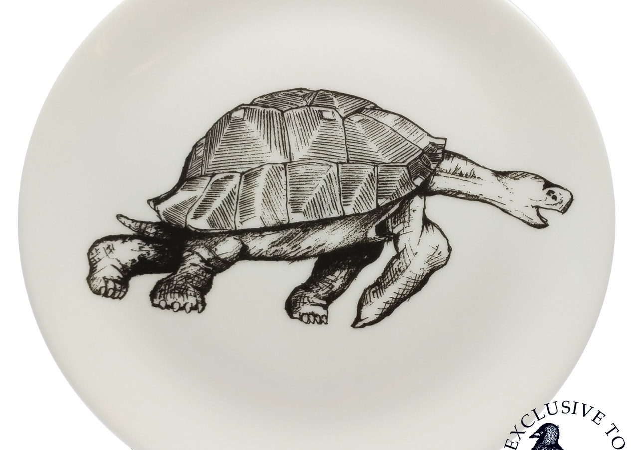 Cheeky Jack Tortoise Plate