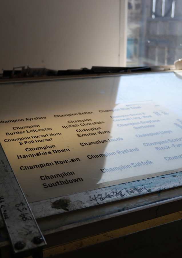 Names for plates on the lightbox